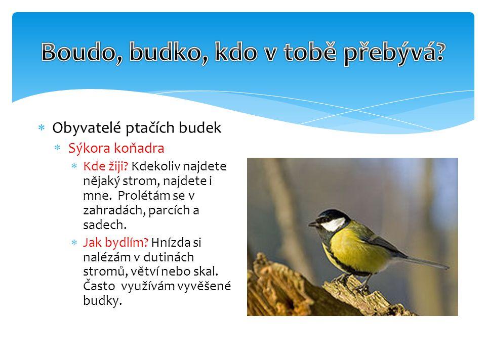  Obyvatelé ptačích budek  Sýkora koňadra  Kde žiji.