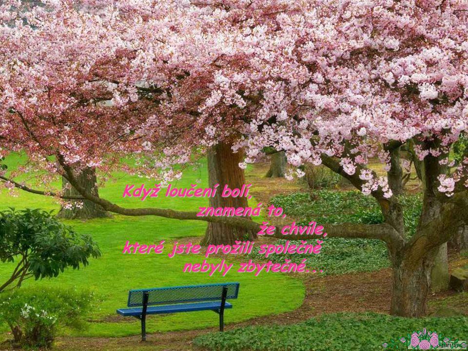 Mezi prvním nádechem a posledním výdechem, a posledním výdechem, by měl být jeden krásny život... by měl být jeden krásny život...