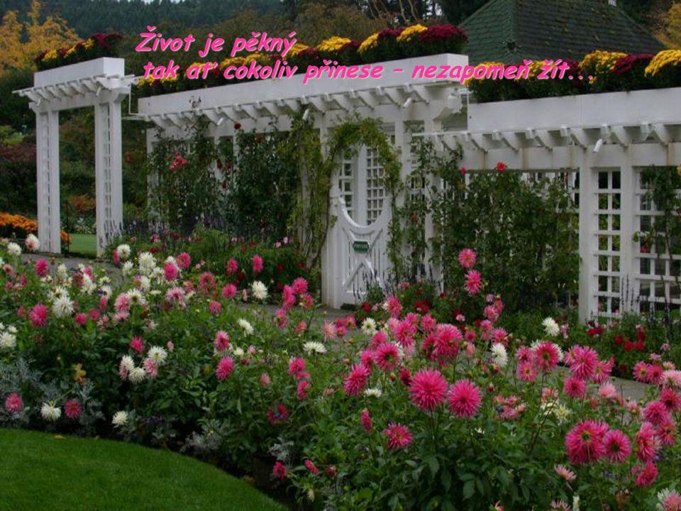 Život je pěkný tak ať cokoliv přinese – nezapomeň žít... tak ať cokoliv přinese – nezapomeň žít...