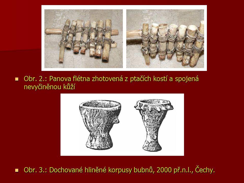 Obr. 2.: Panova flétna zhotovená z ptačích kostí a spojená nevyčiněnou kůží Obr. 2.: Panova flétna zhotovená z ptačích kostí a spojená nevyčiněnou kůž