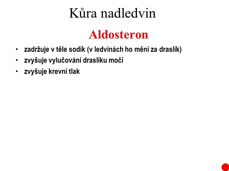 Kůra nadledvin Aldosteron zadržuje v těle sodík (v ledvinách ho mění za draslík) zvyšuje vylučování draslíku močí zvyšuje krevní tlak