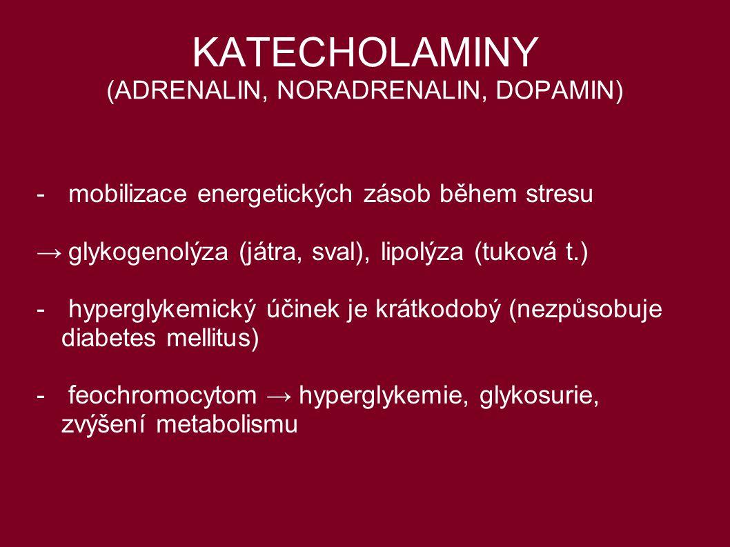KATECHOLAMINY (ADRENALIN, NORADRENALIN, DOPAMIN) -mobilizace energetických zásob během stresu →glykogenolýza (játra, sval), lipolýza (tuková t.) - hyp