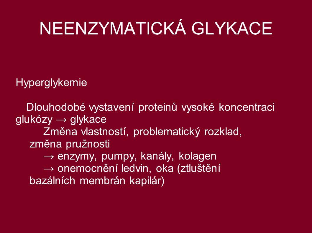 NEENZYMATICKÁ GLYKACE Hyperglykemie Dlouhodobé vystavení proteinů vysoké koncentraci glukózy → glykace Změna vlastností, problematický rozklad, změna