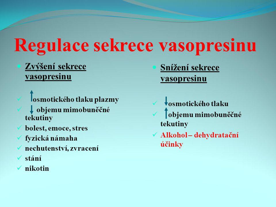 Regulace sekrece vasopresinu Zvýšení sekrece vasopresinu osmotického tlaku plazmy objemu mimobuněčné tekutiny bolest, emoce, stres fyzická námaha nechutenství, zvracení stání nikotin Snížení sekrece vasopresinu osmotického tlaku objemu mimobuněčné tekutiny Alkohol – dehydratační účinky