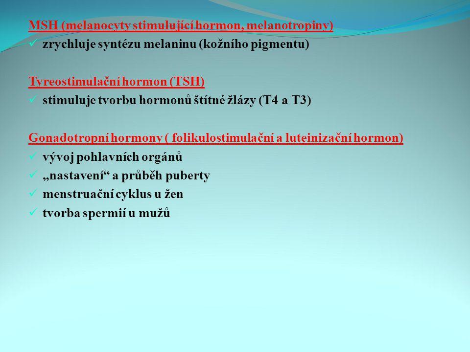 """MSH (melanocyty stimulující hormon, melanotropiny) zrychluje syntézu melaninu (kožního pigmentu) Tyreostimulační hormon (TSH) stimuluje tvorbu hormonů štítné žlázy (T4 a T3) Gonadotropní hormony ( folikulostimulační a luteinizační hormon) vývoj pohlavních orgánů """"nastavení a průběh puberty menstruační cyklus u žen tvorba spermií u mužů"""