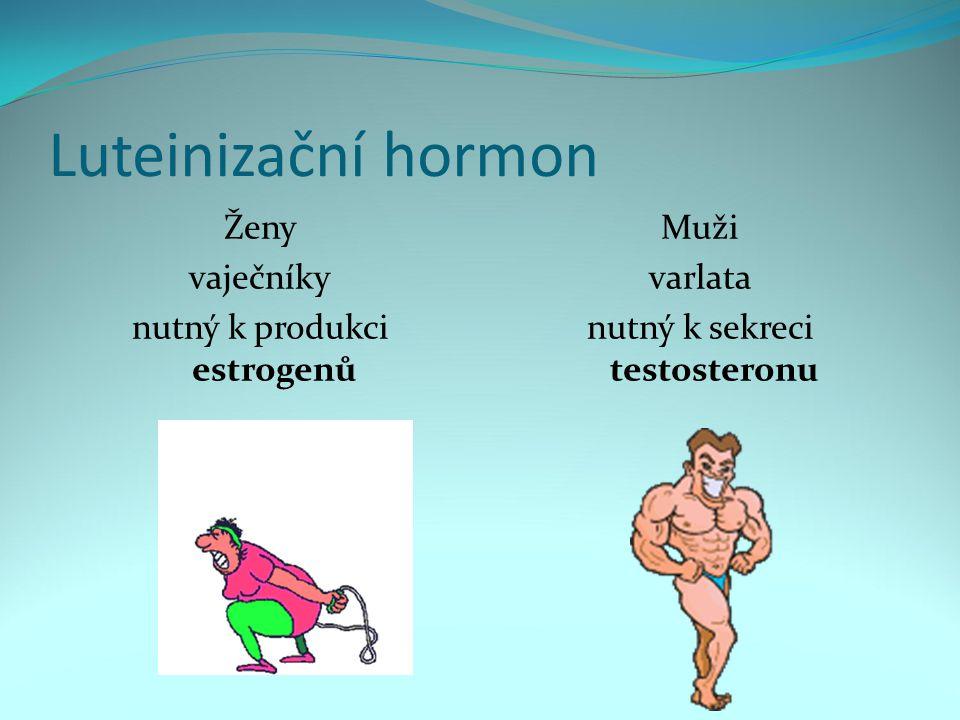 Luteinizační hormon Ženy vaječníky nutný k produkci estrogenů Muži varlata nutný k sekreci testosteronu