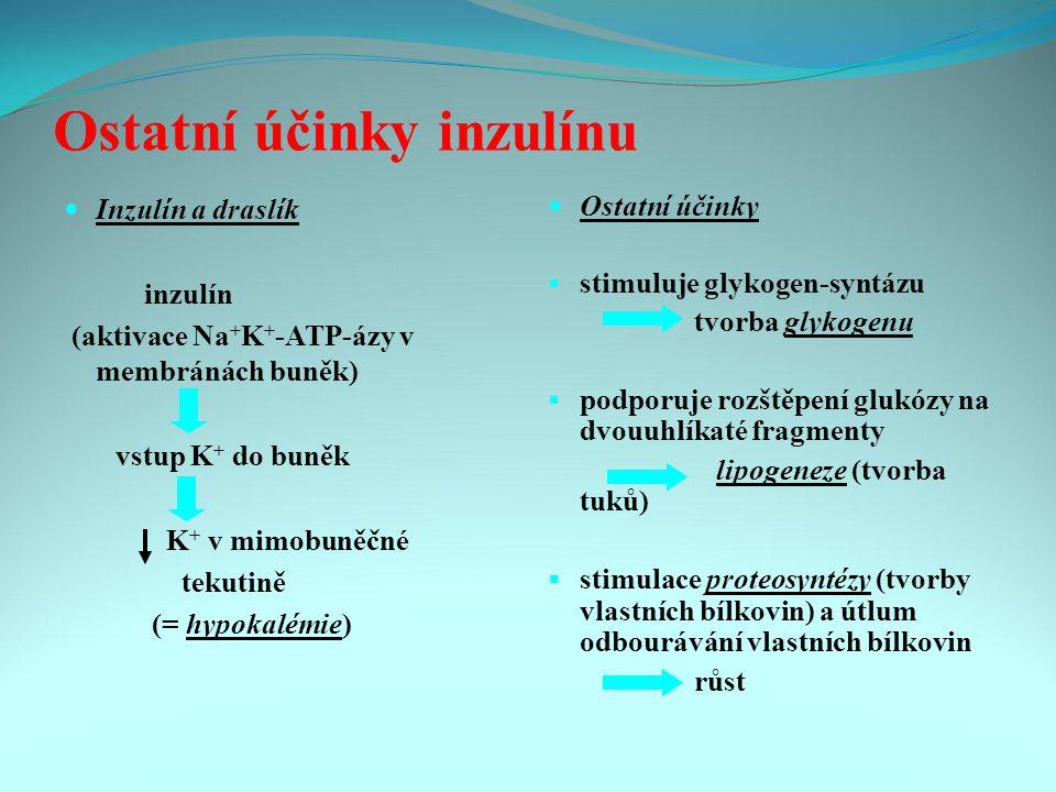 Ostatní účinky inzulínu Inzulín a draslík inzulín (aktivace Na + K + -ATP-ázy v membránách buněk) vstup K + do buněk K + v mimobuněčné tekutině (= hypokalémie) Ostatní účinky  stimuluje glykogen-syntázu tvorba glykogenu  podporuje rozštěpení glukózy na dvouuhlíkaté fragmenty lipogeneze (tvorba tuků)  stimulace proteosyntézy (tvorby vlastních bílkovin) a útlum odbourávání vlastních bílkovin růst