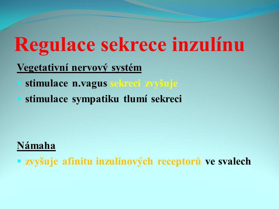Regulace sekrece inzulínu Vegetativní nervový systém  stimulace n.vagus sekreci zvyšuje  stimulace sympatiku tlumí sekreci Námaha  zvyšuje afinitu inzulínových receptorů ve svalech