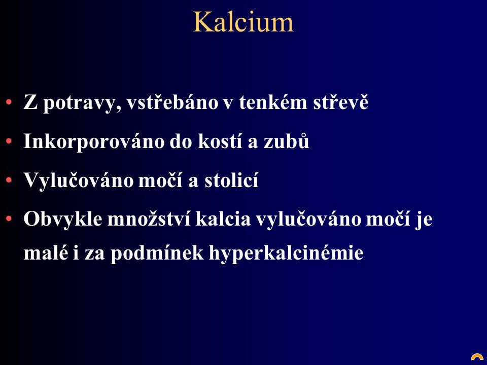 Kalcium Z potravy, vstřebáno v tenkém střevě Inkorporováno do kostí a zubů Vylučováno močí a stolicí Obvykle množství kalcia vylučováno močí je malé i za podmínek hyperkalcinémie
