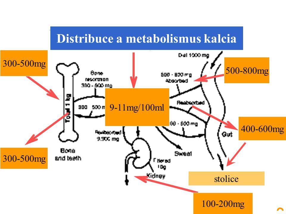 500-800mg 400-600mg 100-200mg 300-500mg 9-11mg/100ml Distribuce a metabolismus kalcia stolice