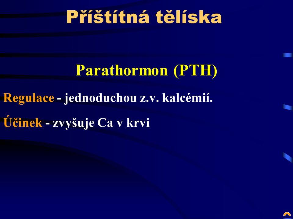 Příštítná tělíska Parathormon (PTH) Regulace - jednoduchou z.v.