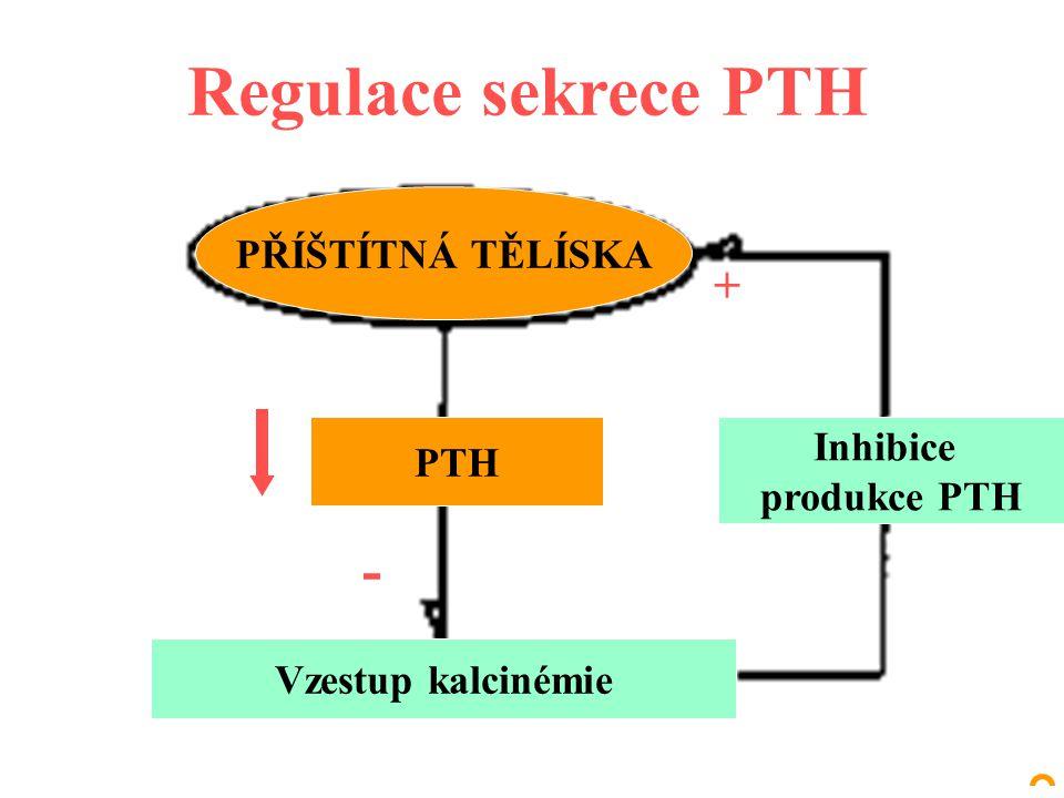 Regulace sekrece PTH PŘÍŠTÍTNÁ TĚLÍSKA PTH Vzestup kalcinémie Inhibice produkce PTH - +