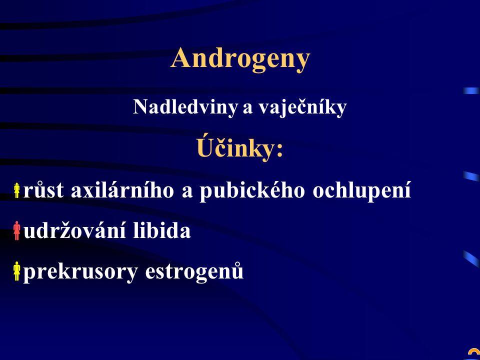 Androgeny Nadledviny a vaječníky Účinky:  růst axilárního a pubického ochlupení  udržování libida  prekrusory estrogenů