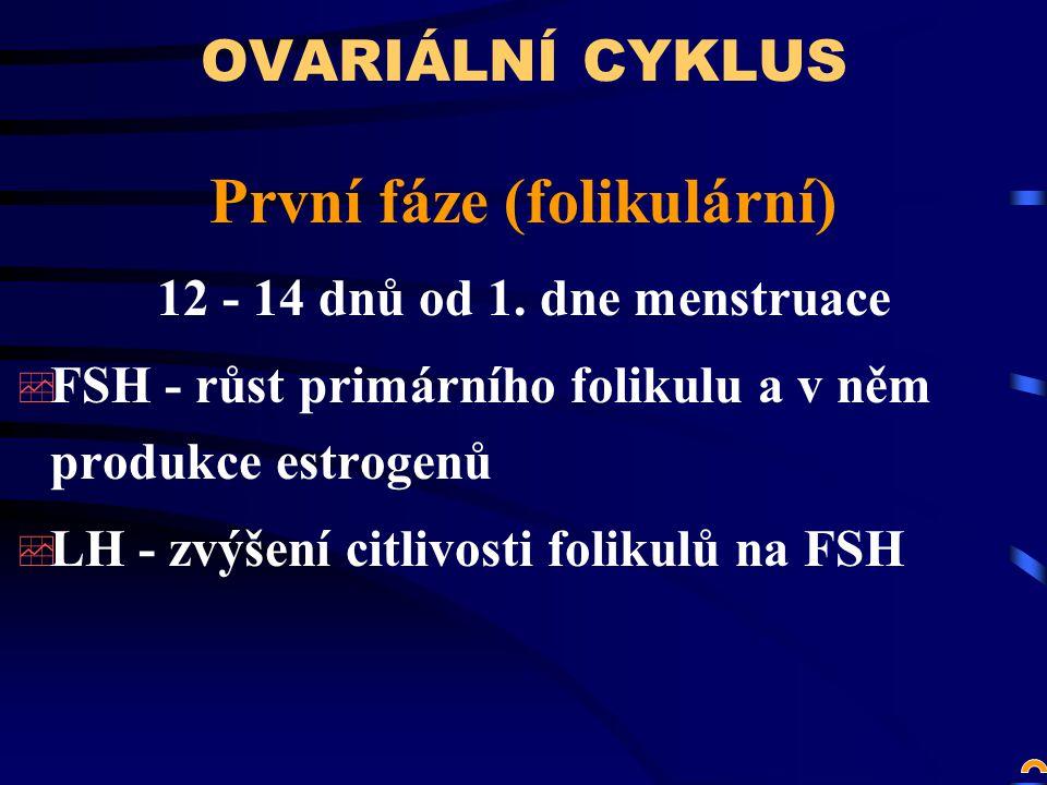 OVARIÁLNÍ CYKLUS První fáze (folikulární) 12 - 14 dnů od 1.