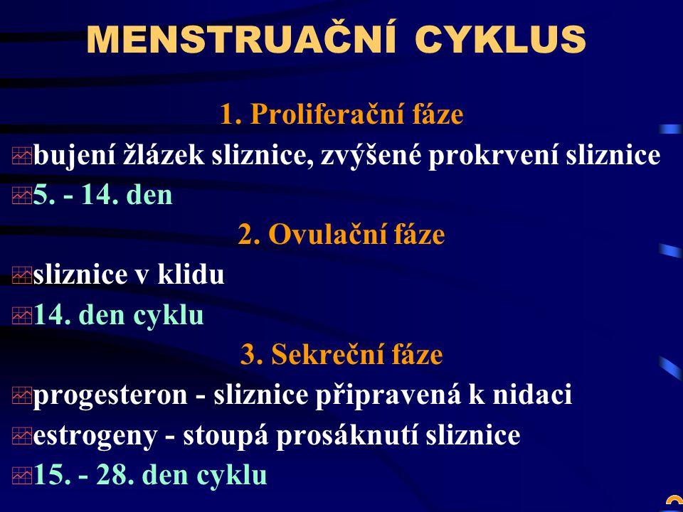 MENSTRUAČNÍ CYKLUS 1.Proliferační fáze  bujení žlázek sliznice, zvýšené prokrvení sliznice  5.