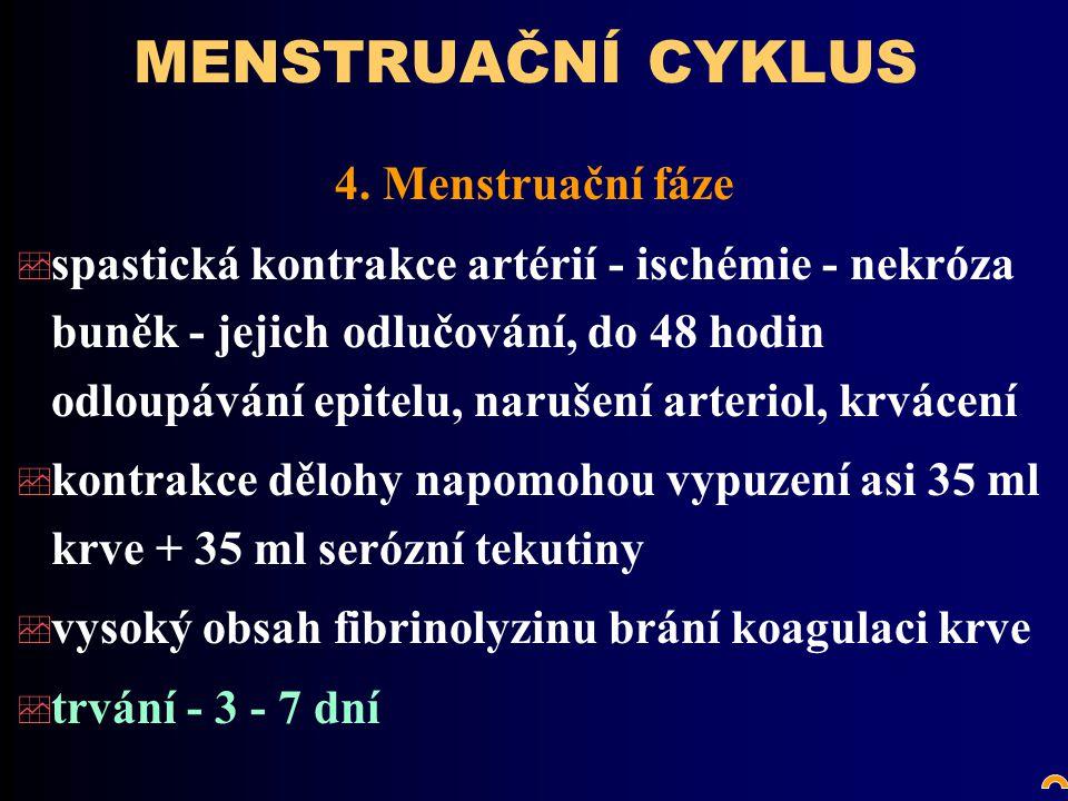 MENSTRUAČNÍ CYKLUS 4.
