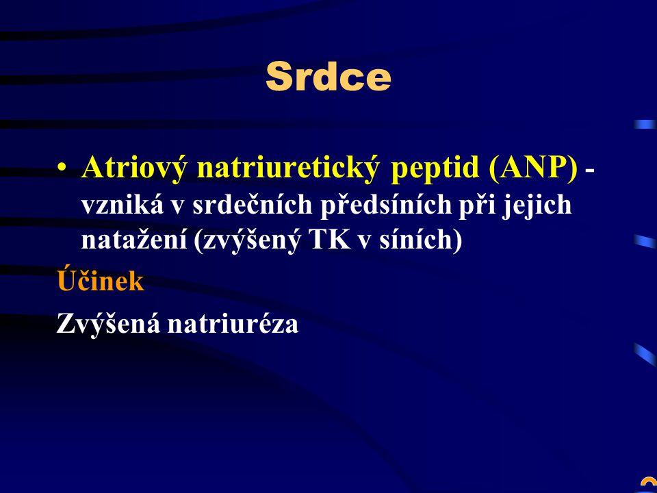 Srdce Atriový natriuretický peptid (ANP) - vzniká v srdečních předsíních při jejich natažení (zvýšený TK v síních) Účinek Zvýšená natriuréza