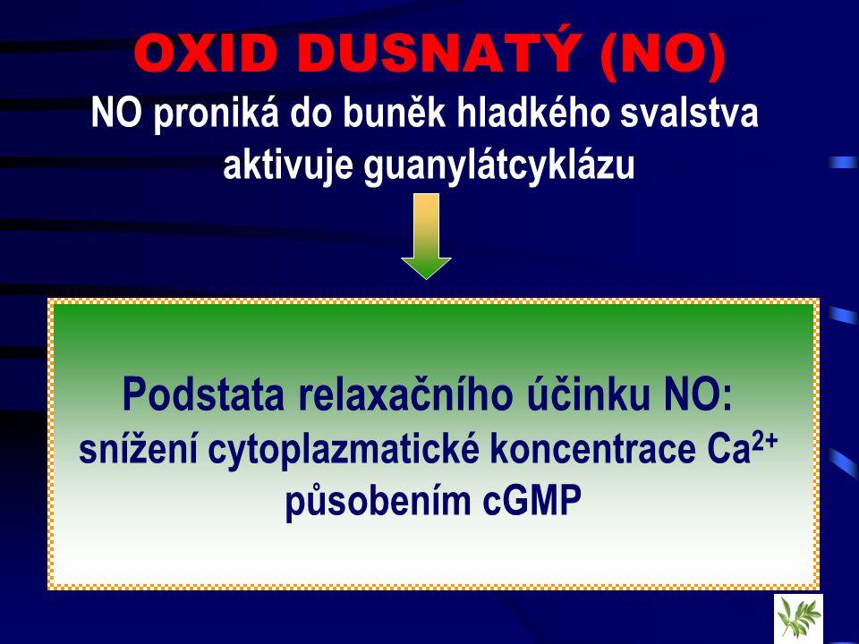 OXID DUSNATÝ (NO) NO proniká do buněk hladkého svalstva aktivuje guanylátcyklázu Podstata relaxačního účinku NO: snížení cytoplazmatické koncentrace Ca 2+ působením cGMP