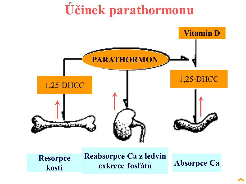 Účinek parathormonu Vitamin D PARATHORMON 1,25-DHCC Resorpce kostí Reabsorpce Ca z ledvin exkrece fosfátů Absorpce Ca