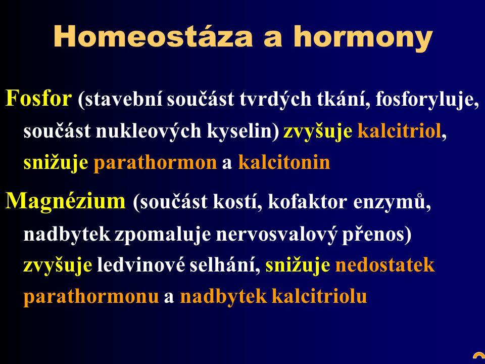 Homeostáza a hormony Fosfor (stavební součást tvrdých tkání, fosforyluje, součást nukleových kyselin) zvyšuje kalcitriol, snižuje parathormon a kalcitonin Magnézium (součást kostí, kofaktor enzymů, nadbytek zpomaluje nervosvalový přenos) zvyšuje ledvinové selhání, snižuje nedostatek parathormonu a nadbytek kalcitriolu