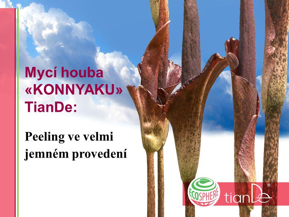 Mycí houba «KONNYAKU» TianDe: Peeling ve velmi jemném provedení