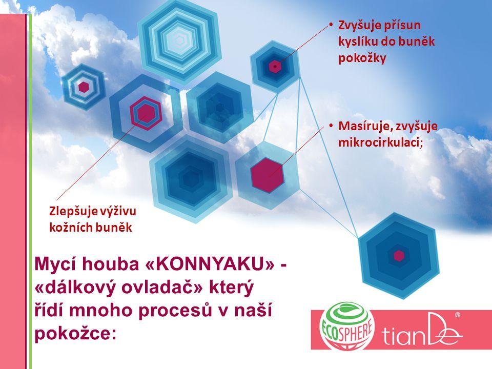 Mycí houba «KONNYAKU» - «dálkový ovladač» který řídí mnoho procesů v naší pokožce: Masíruje, zvyšuje mikrocirkulaci; Zlepšuje výživu kožních buněk Zvyšuje přísun kyslíku do buněk pokožky