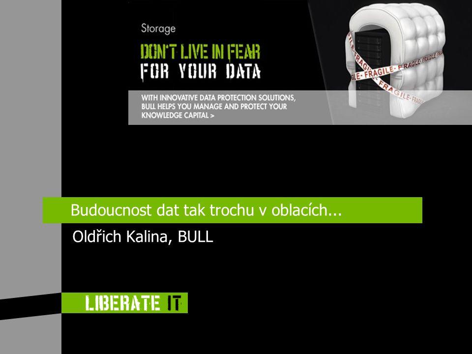 Budoucnost dat tak trochu v oblacích... Oldřich Kalina, BULL
