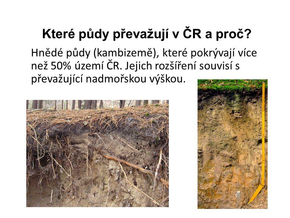 Které půdy převažují v ČR a proč.Hnědé půdy (kambizemě), které pokrývají více než 50% území ČR.