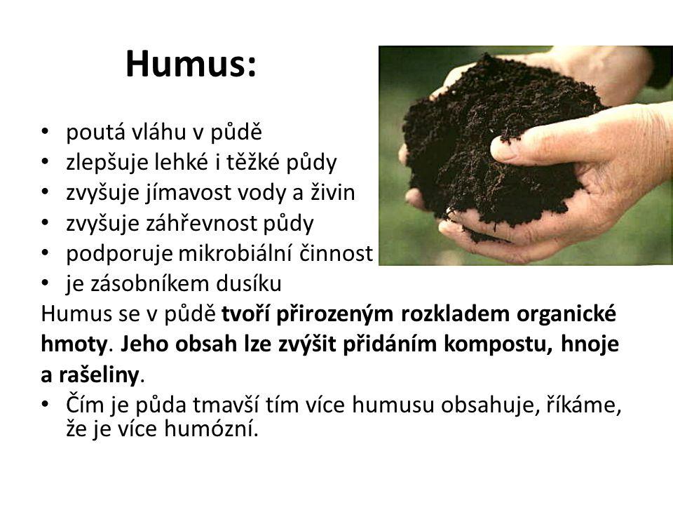 Humus: poutá vláhu v půdě zlepšuje lehké i těžké půdy zvyšuje jímavost vody a živin zvyšuje záhřevnost půdy podporuje mikrobiální činnost je zásobníkem dusíku Humus se v půdě tvoří přirozeným rozkladem organické hmoty.