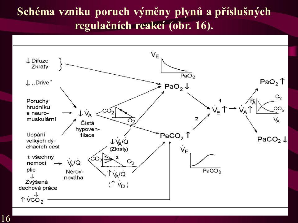 16 Schéma vzniku poruch výměny plynů a příslušných regulačních reakcí (obr. 16).