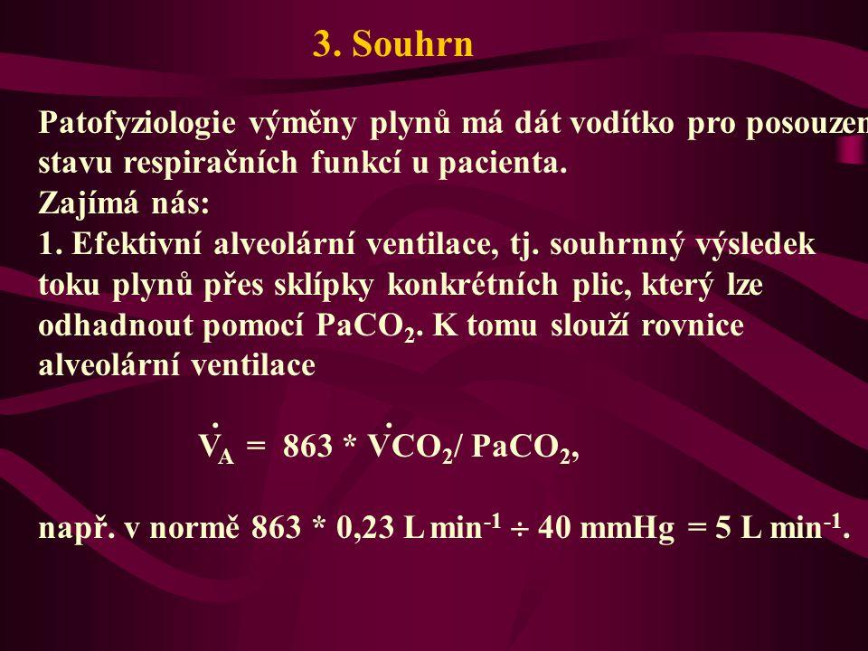 3. Souhrn Patofyziologie výměny plynů má dát vodítko pro posouzení stavu respiračních funkcí u pacienta. Zajímá nás: 1. Efektivní alveolární ventilace
