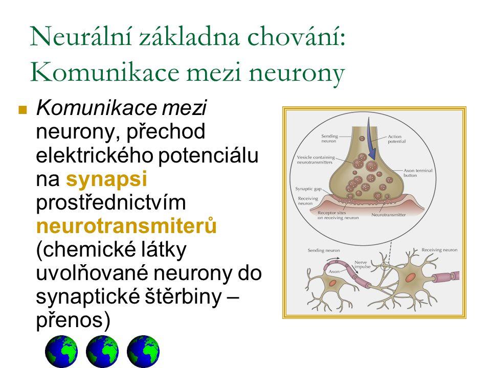 Neurální základna chování: Komunikace mezi neurony Komunikace mezi neurony, přechod elektrického potenciálu na synapsi prostřednictvím neurotransmiterů (chemické látky uvolňované neurony do synaptické štěrbiny – přenos)