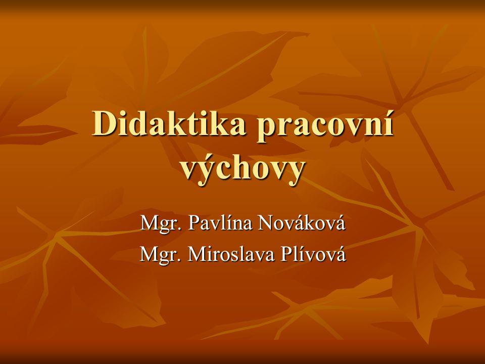Didaktika pracovní výchovy Mgr. Pavlína Nováková Mgr. Miroslava Plívová