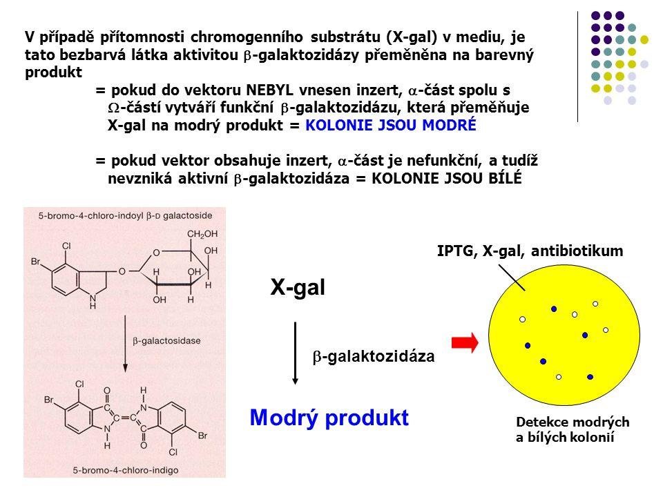 X-gal  -galaktozidáza Modrý produkt Detekce modrých a bílých kolonií V případě přítomnosti chromogenního substrátu (X-gal) v mediu, je tato bezbarvá