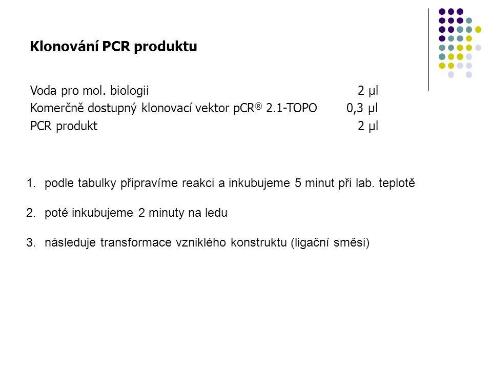 Klonování PCR produktu Voda pro mol. biologii Komerčně dostupný klonovací vektor pCR ® 2.1-TOPO PCR produkt 2 µl 0,3 µl 2 µl 1.podle tabulky připravím