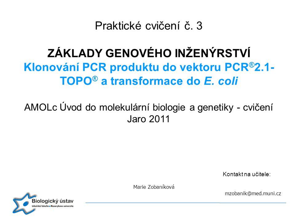 Kontakt na učitele: Marie Zobaníková mzobanik@med.muni.cz Praktické cvičení č. 3 ZÁKLADY GENOVÉHO INŽENÝRSTVÍ Klonování PCR produktu do vektoru PCR ®