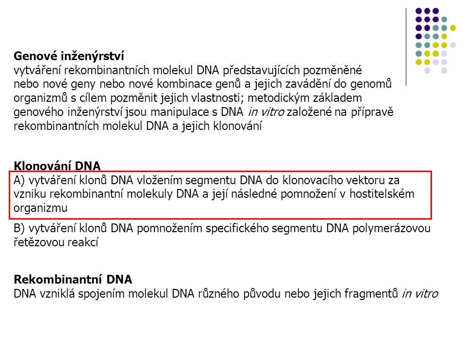 Klonování DNA A) vytváření klonů DNA vložením segmentu DNA do klonovacího vektoru za vzniku rekombinantní molekuly DNA a její následné pomnožení v hos