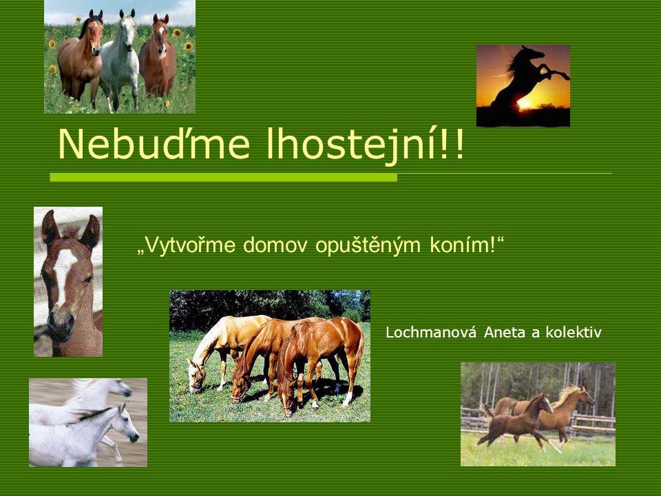 """Nebuďme lhostejní!! """"Vytvořme domov opuštěným koním! Lochmanová Aneta a kolektiv"""