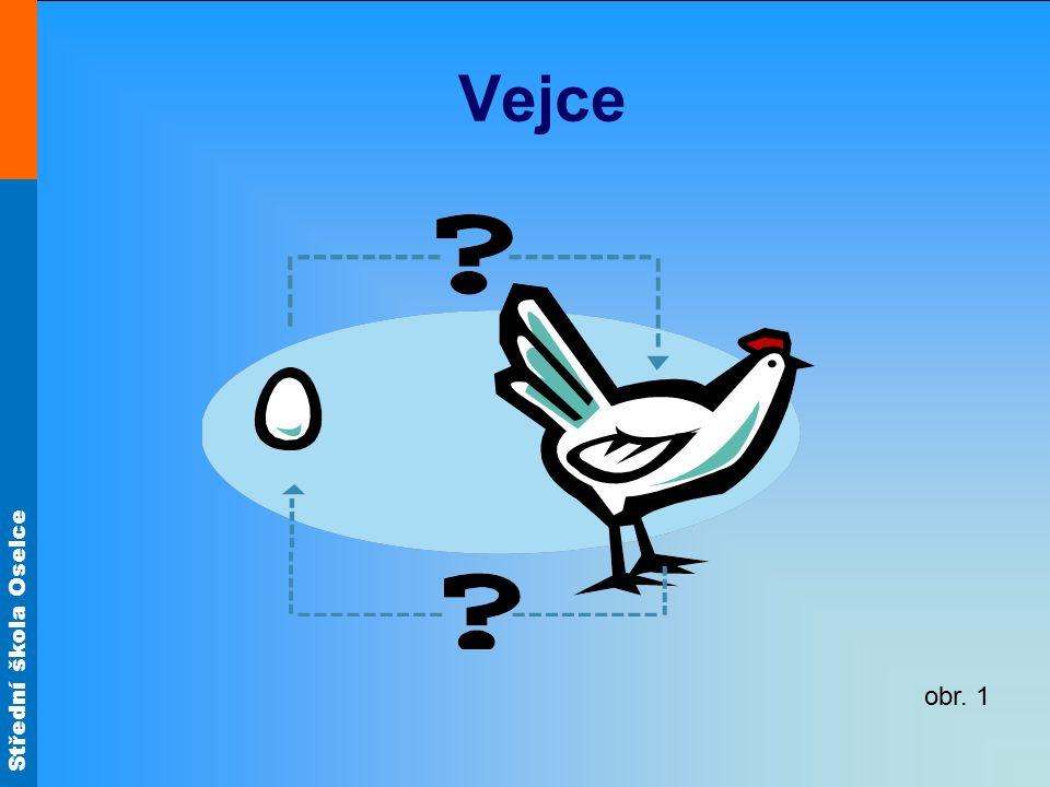Střední škola Oselce Vejce jsou samičí pohlavní buňky ptáků obsahují plnohodnotné bílkoviny, tuky, cukry, minerální látky (P, Ca, Fe) a vitamíny (A, D, E, K, B2).