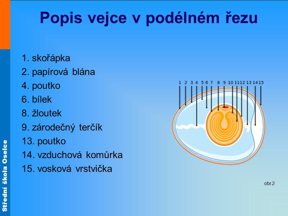 Střední škola Oselce Složení vejce bílek – plnohodnotná bílkovina, obsahuje minerální látky a vitamíny čerstvý bílek je hustý a průhledný teplem se sráží má velkou šlehatelnost žloutek – tuková emulze, obsahuje cholesterol, vitamíny A, D, PP, B barva je žlutá až oranžová, tvar pravidelný kulovitý leží ve středu vejce a je nepohyblivý