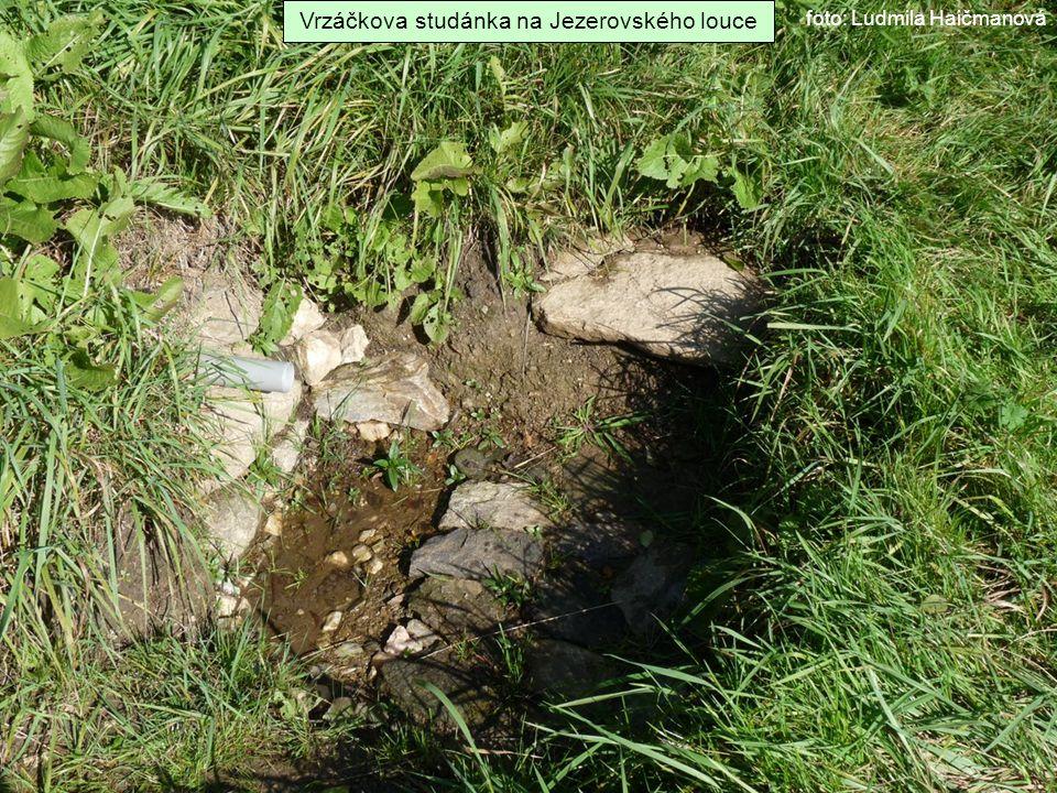 Vrzáčkova studánka na Jezerovského louce foto: Ludmila Haičmanová