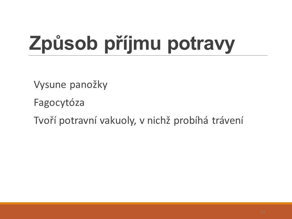 Způsob příjmu potravy Vysune panožky Fagocytóza Tvoří potravní vakuoly, v nichž probíhá trávení 11