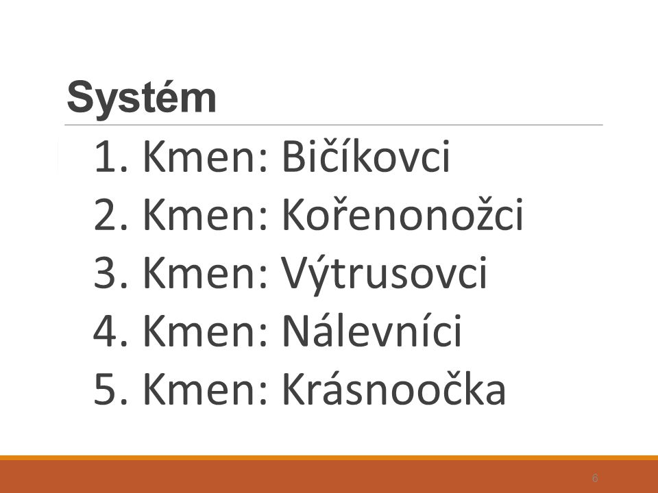 Systém 1. Kmen: Bičíkovci 2. Kmen: Kořenonožci 3. Kmen: Výtrusovci 4. Kmen: Nálevníci 5. Kmen: Krásnoočka 6