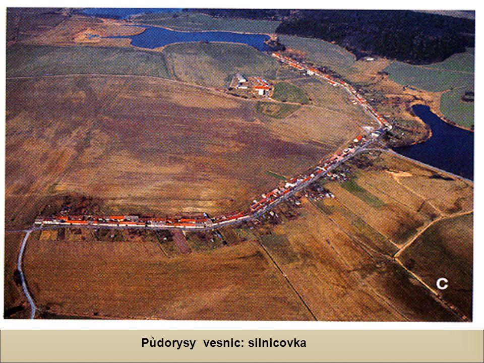 Půdorysy vesnic: silnicovka