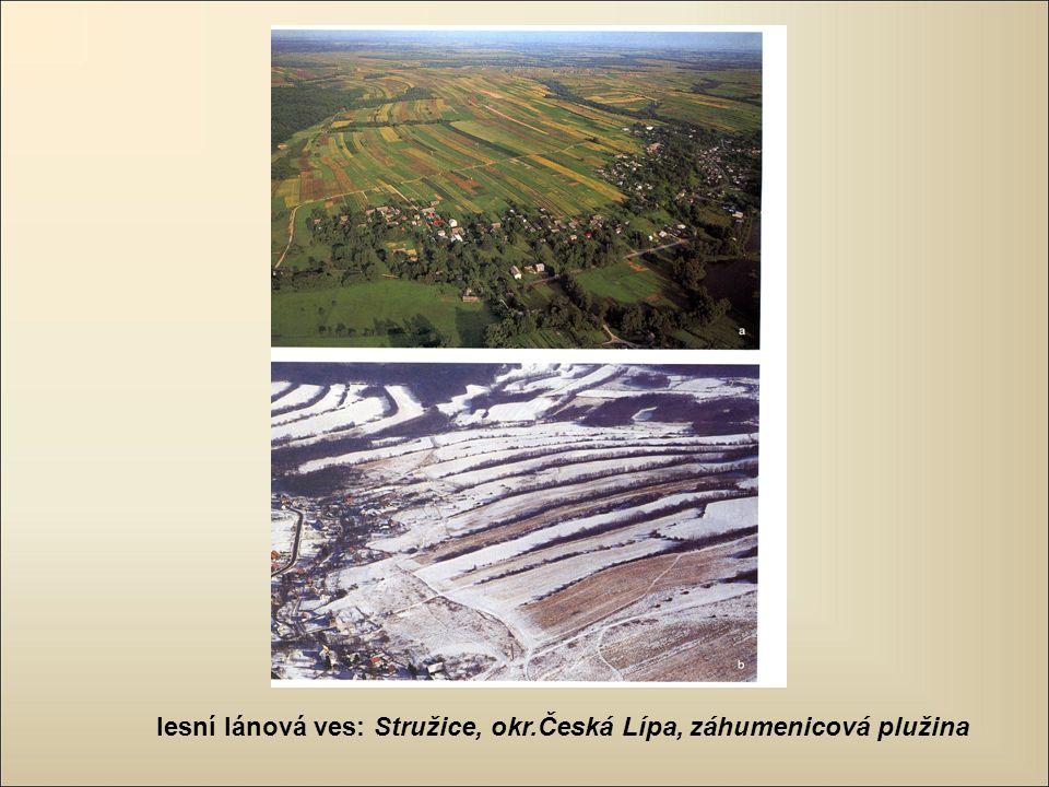 lesní lánová ves: Stružice, okr.Česká Lípa, záhumenicová plužina