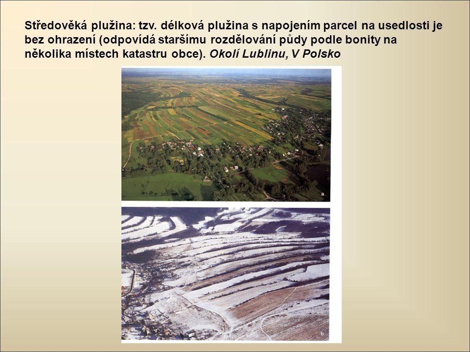 Středověká plužina: tzv. délková plužina s napojením parcel na usedlosti je bez ohrazení (odpovídá staršímu rozdělování půdy podle bonity na několika