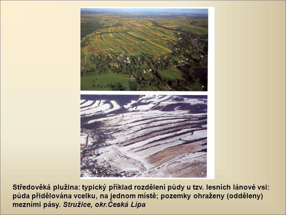 Středověká plužina: typický příklad rozdělení půdy u tzv. lesních lánové vsi: půda přidělována vcelku, na jednom místě; pozemky ohraženy (odděleny) me