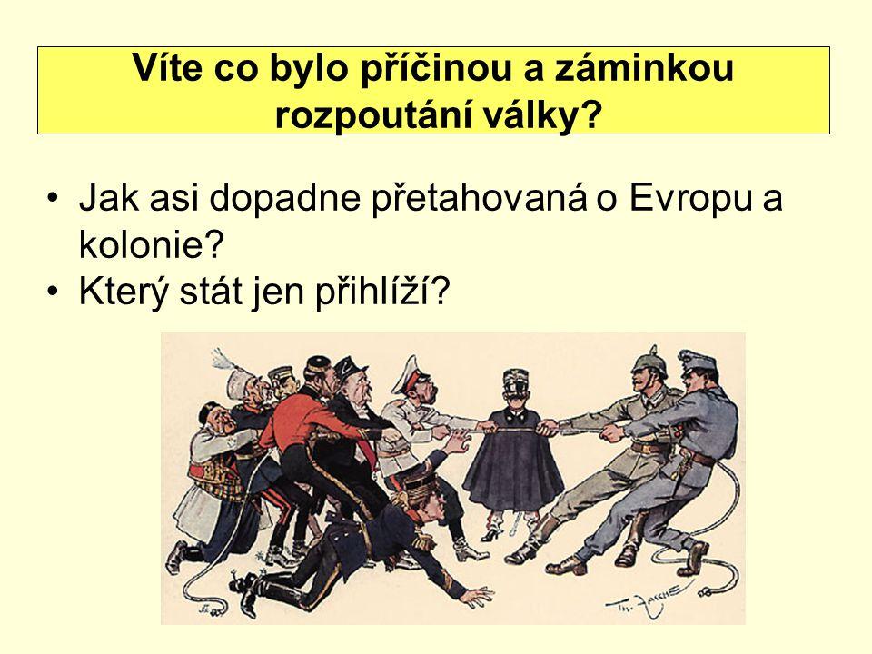Jak asi dopadne přetahovaná o Evropu a kolonie? Který stát jen přihlíží? Víte co bylo příčinou a záminkou rozpoutání války?