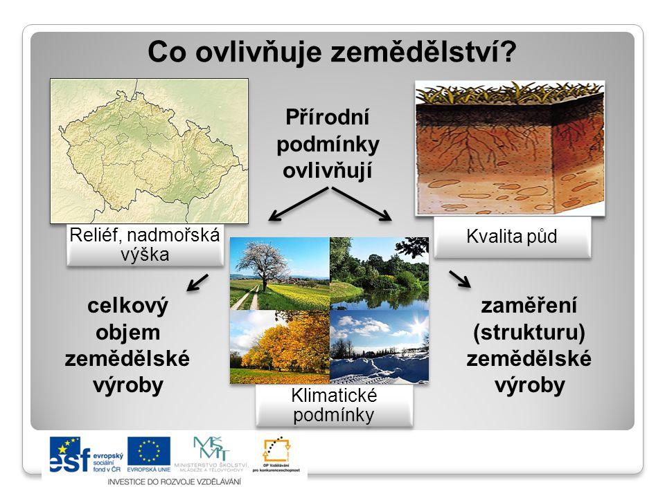 Struktura půdního fondu ČR Půdní fond - využití půdy Zemědělský půdní fond 54 % z celkové plochy státu Orná půda Louky a pastviny Ostatní zeměděl.