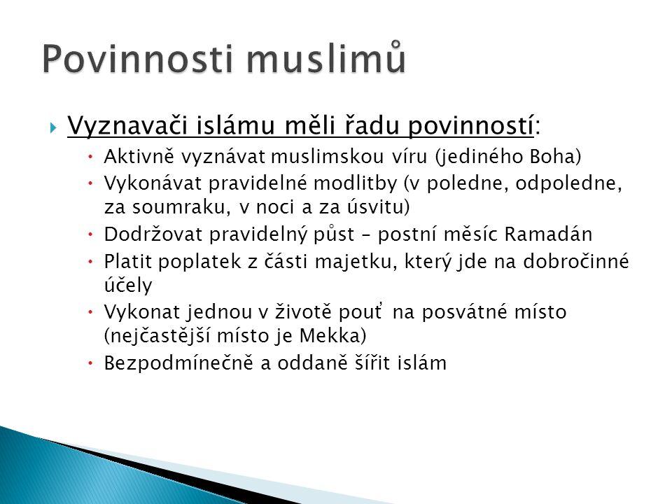  Vyznavači islámu měli řadu povinností:  Aktivně vyznávat muslimskou víru (jediného Boha)  Vykonávat pravidelné modlitby (v poledne, odpoledne, za soumraku, v noci a za úsvitu)  Dodržovat pravidelný půst – postní měsíc Ramadán  Platit poplatek z části majetku, který jde na dobročinné účely  Vykonat jednou v životě pouť na posvátné místo (nejčastější místo je Mekka)  Bezpodmínečně a oddaně šířit islám